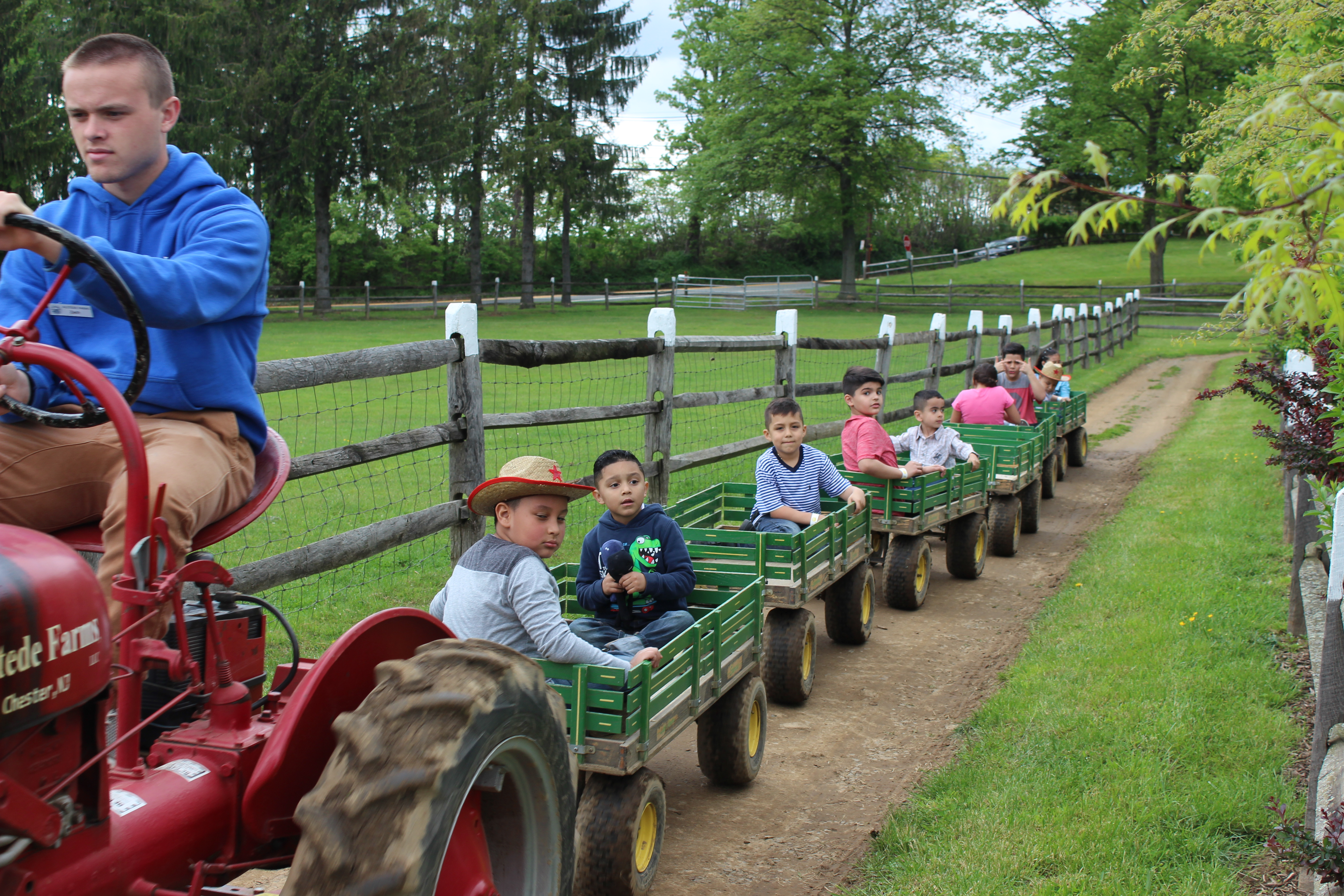 Tractor rides are very popular on U Pick weekends at Alstede Farms