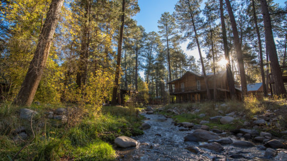 Cabins are the favorite accommodation for families in Ruidoso