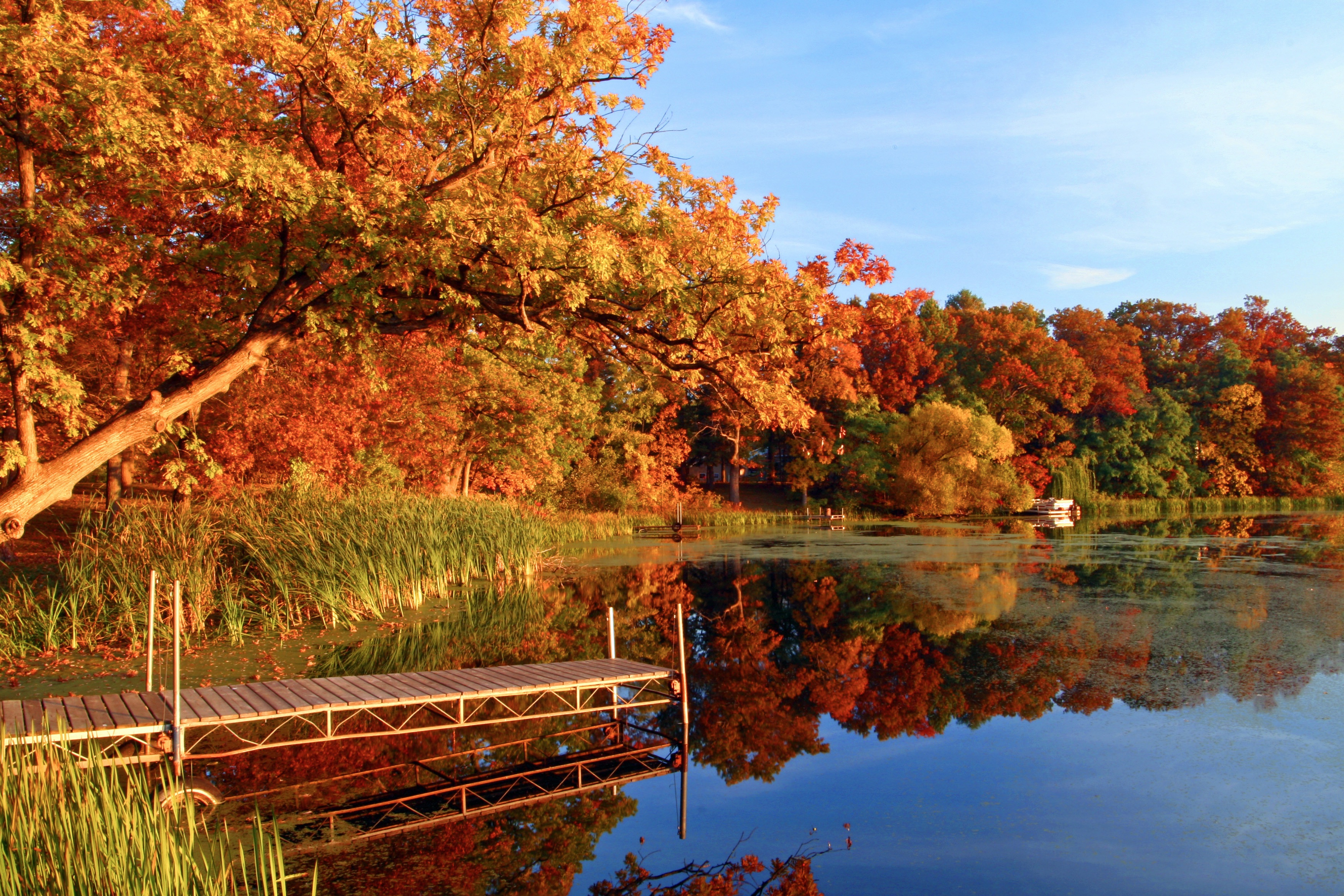 A Guide to Fall Foliage