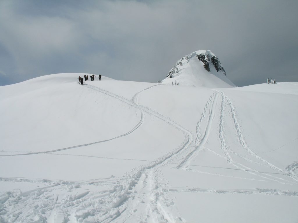 Skiers head off piste to fresh powder.