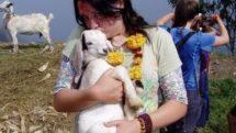 Author Cradles Goat in Nepal