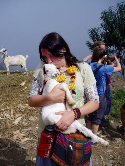 Author Cradles Goat in Nepal