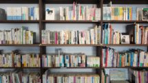 bookshelves full of books