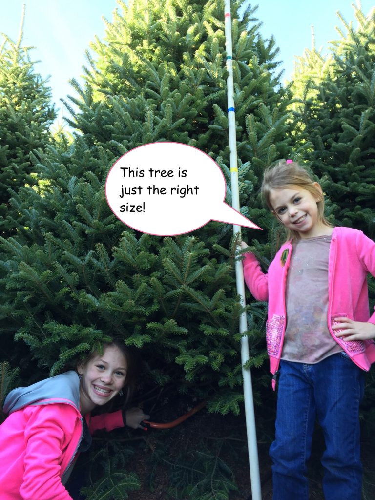 girls with evergreen tree