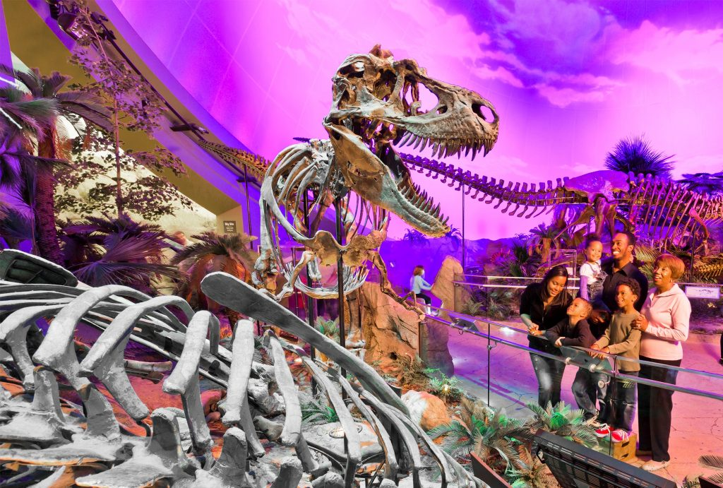 Dinosphere Gallery at The Children's Museum of Indianapolis