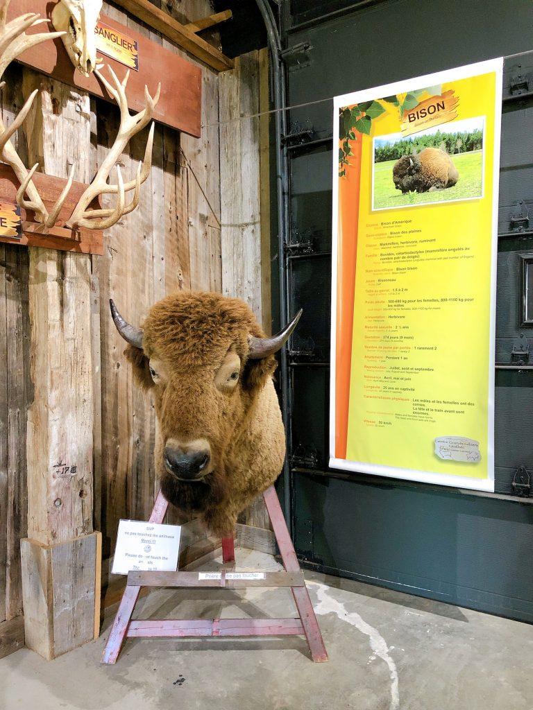 La Terre des Bisons Wild Game Center