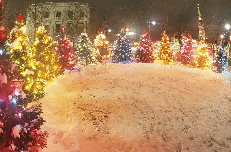 Christmas trees surround a snowy square in Germany.