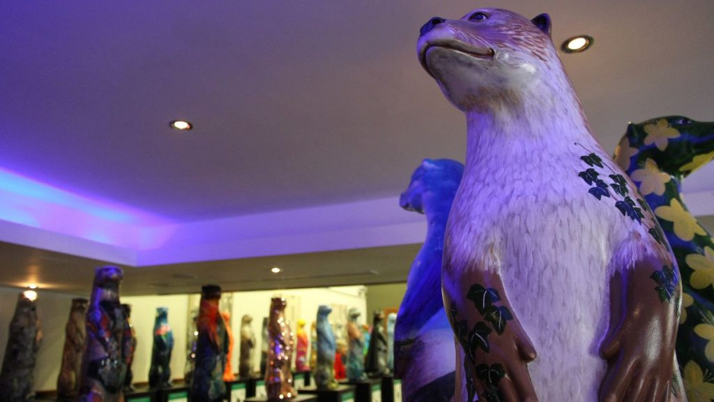 Painted Otters seen in this gallery are part of a new outdoors arts trail in Cornwall, U.K.