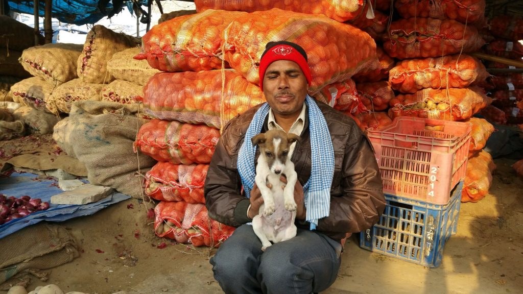 An onion seller brings his puppy to the Agra Market.