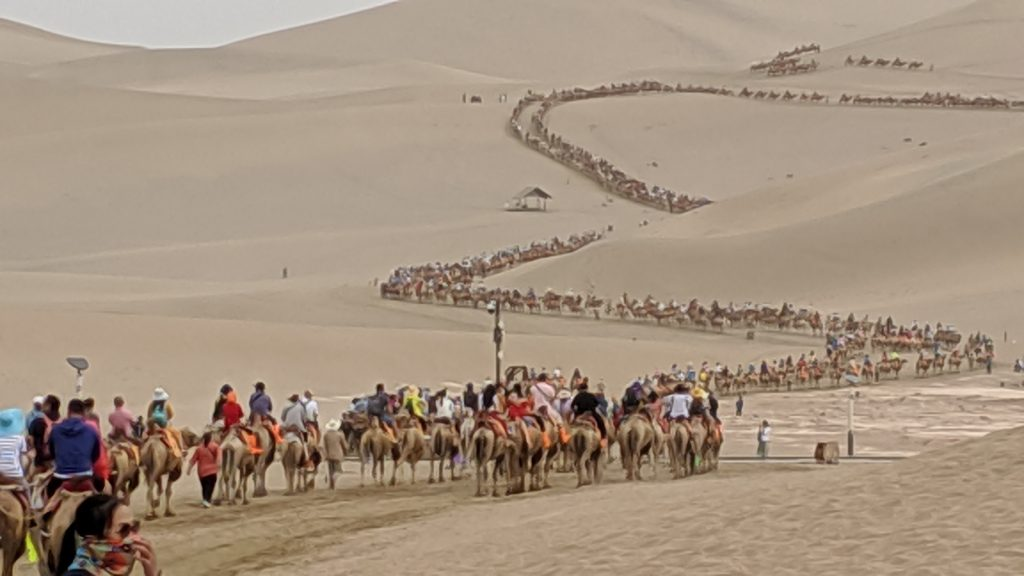 Camel caravan of thousands at Echoing Sands National Geopark, Dunhuang, China