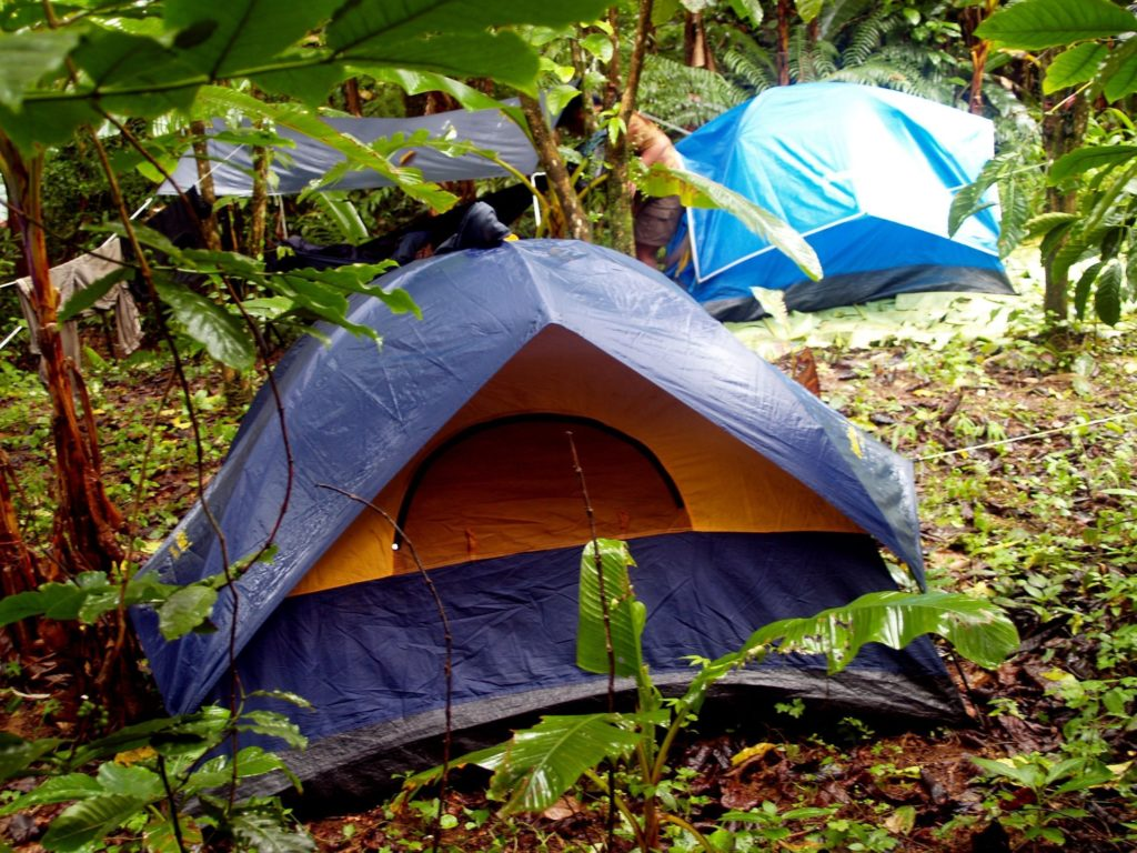 Tents and lean to in a wet forest after rain