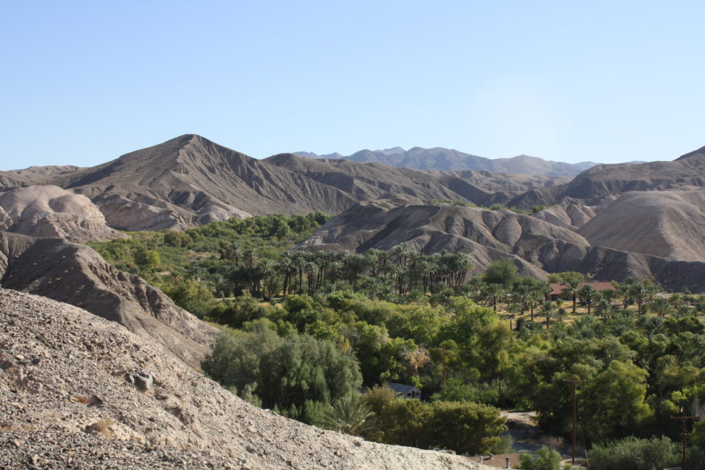 Date groves in China Ranch, Tecopa, California