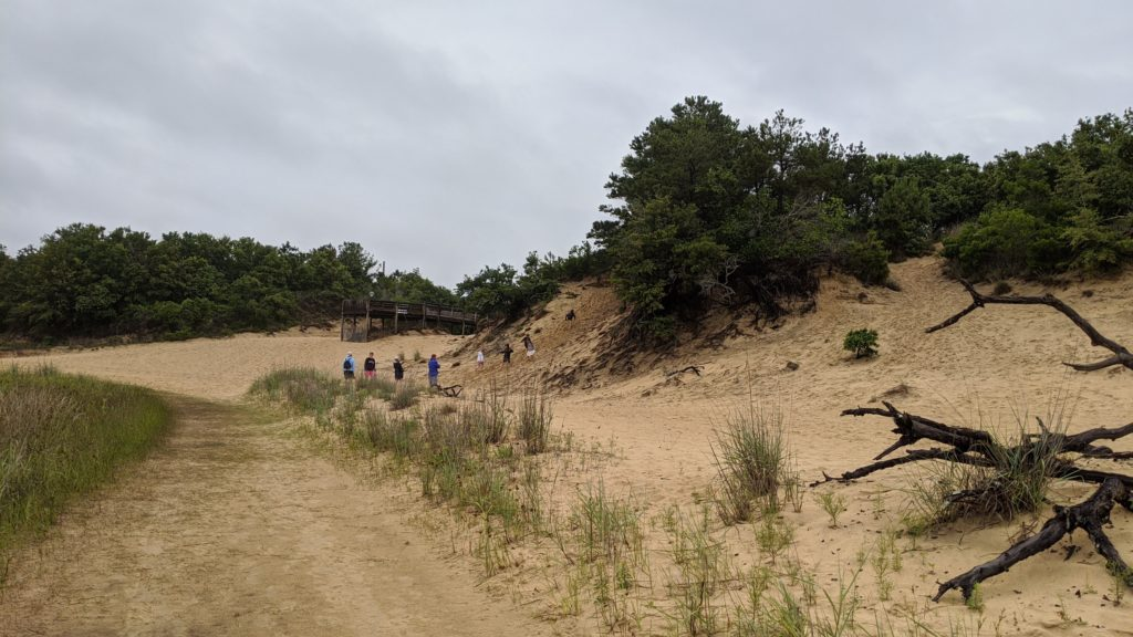 The dunes at Jockey Ridge Preserve.