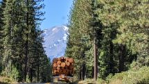 Logging truck in upstate California with Mount Shasta in the background.