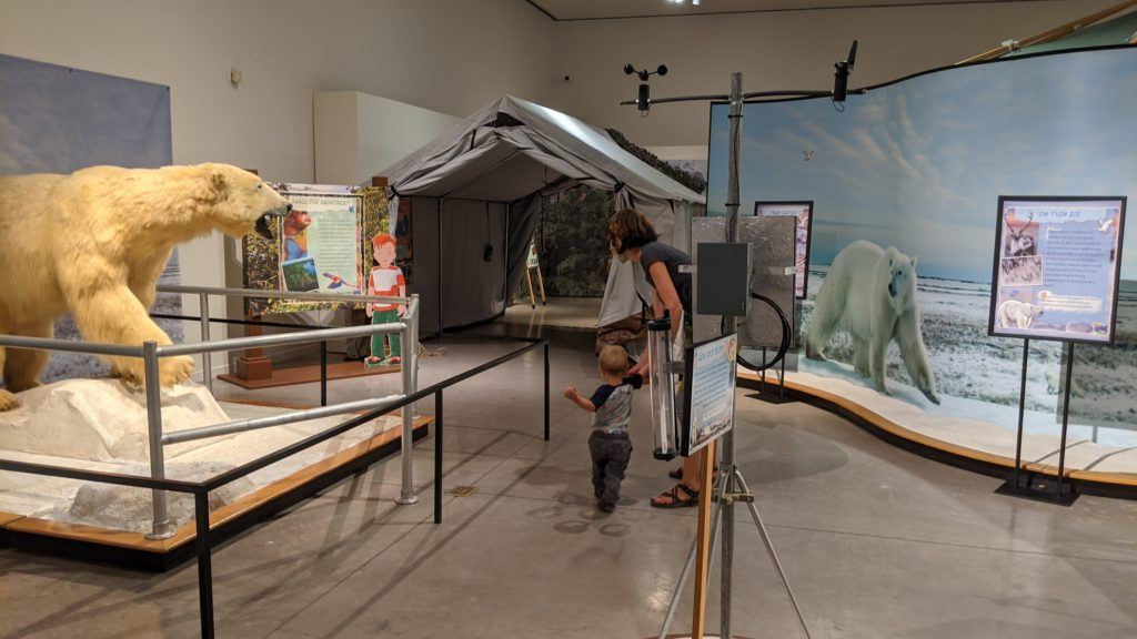 Polar Exhibit at Tutrtle Bay Museum of Natural Science Redding California
