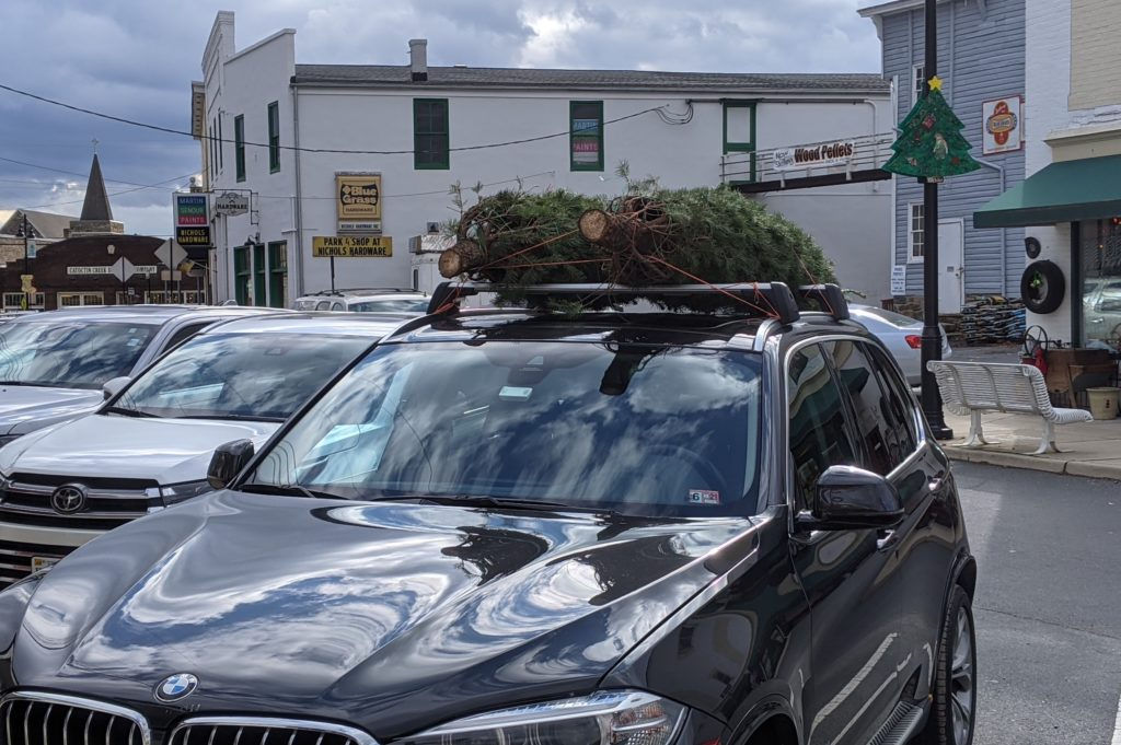 Car in Virginia carries two u-pick Christmas trees on its roof.
