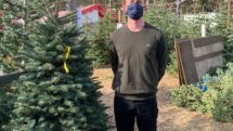 Man in face mask stands with selected Christmas Treet at u-pick farm.