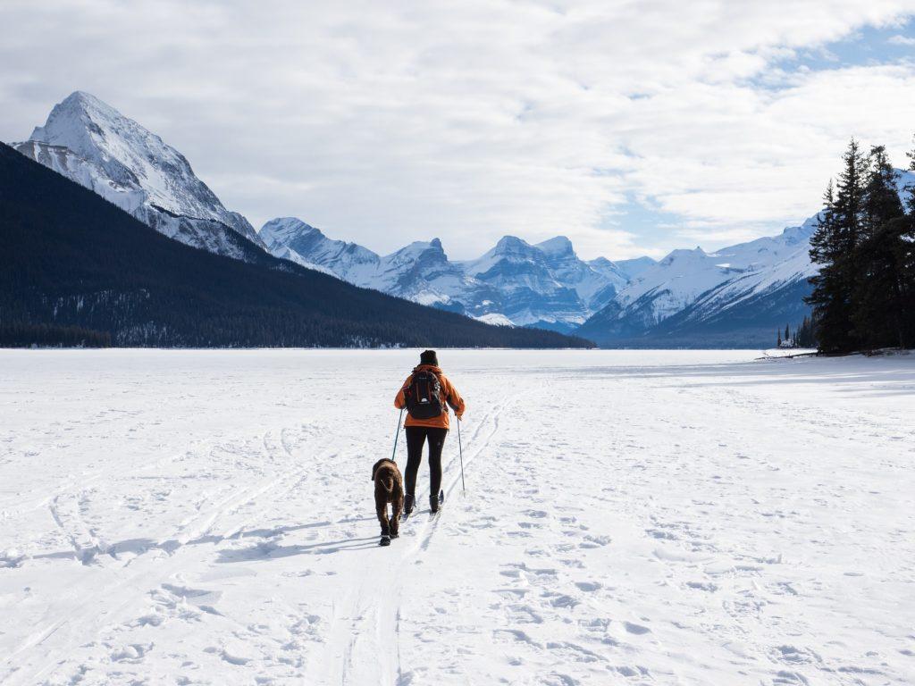 Woman and dog cross country ski on Maligne Lake, Jasper National Park in British Columbia