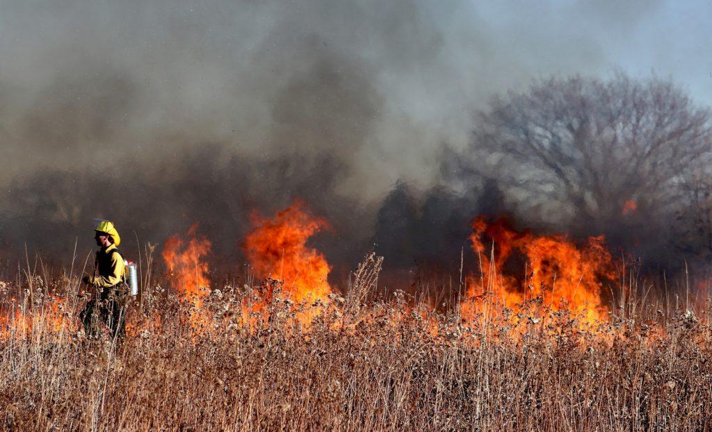 Firefighter battles wildfire in field.