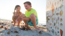 Girl and boy explore seashells on the beach with a photo guide.