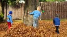 Three children playing in a pile of leaves near a tree