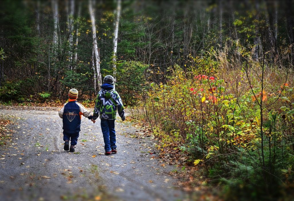Children walk to school on path through the woods, holding hands.