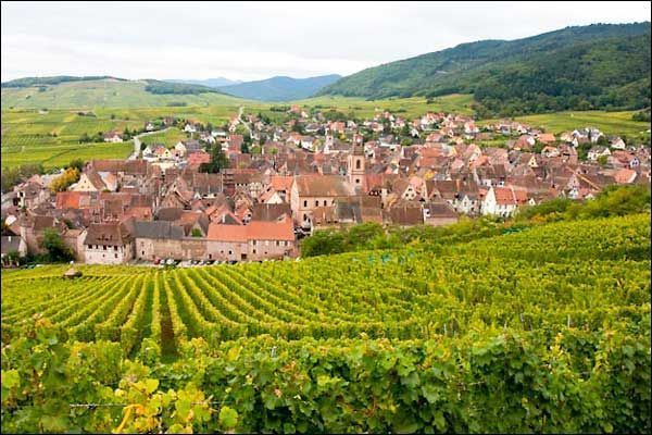 the wine route in alsace france from