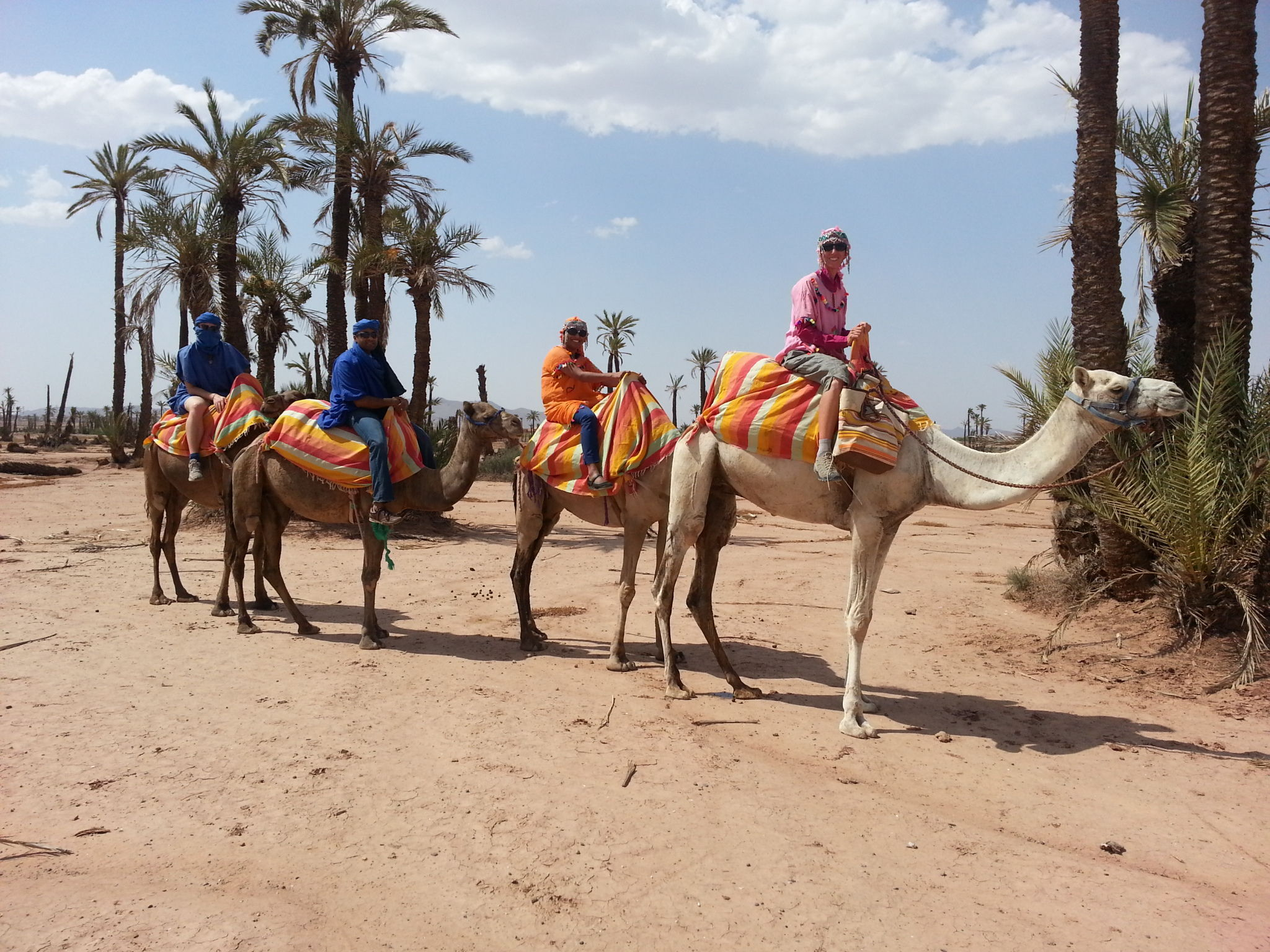 Guided Family Tours and Top Adventure Tour Operators