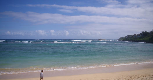 Walking along the sand on a beautiful beach in Hawaii