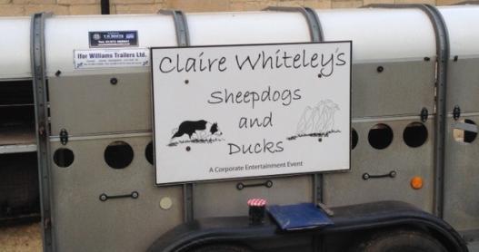 Claire Whiteley's Ducks and Sheepdogs Arrive at Ellenborough Park