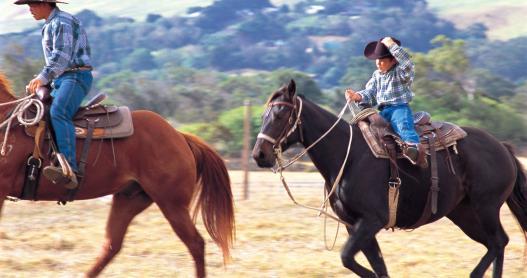 Paniolo - Hawaiian Cowboys on the Big Island