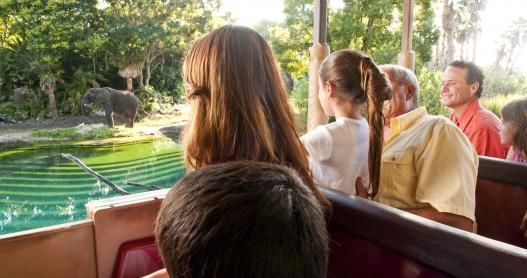 At Animal Kingdom, Safari Trek is part ride, part educational tour.