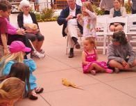 "The ""Radical Reptiles"" show entertains guests on summer weekends."