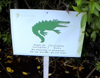 moon-palace-crocodile-sign