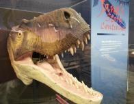 rockford-burpee-museum