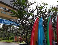 Hans Hedemann surf school at Turtle Bay hotel.