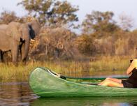 Makoro Safaris Botwana