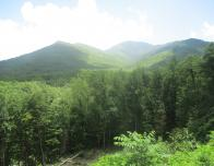 Take in the beauty of the Great Smoky Mountains