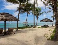 Relax under a beach umbrella