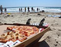 My two favorite things: pizza and the beach.