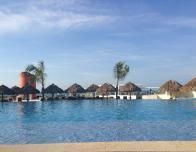 Infinity pool for lap swims and relaxing at the Iberostar.