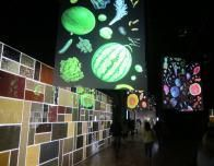 There are many multimedia exhibits throughout Expo 2015.