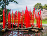 Red Reeds on Logs by Dale Chihuly.