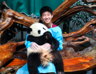 Holding a Baby Panda at Chengdu Panda Conservatory in the Sichuan Province of China