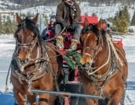 Snow Mountain Ranch Sleigh Ride