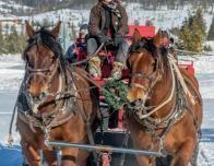 Snow Mountain Ranch Sleigh Ride
