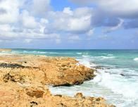 Coast of Cozumel