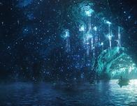 Stargazer Caver Orlando Florida