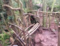 Bench in Puzzlewood