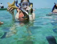 snorkeling5